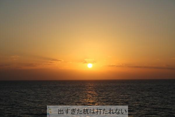 IMG_4930