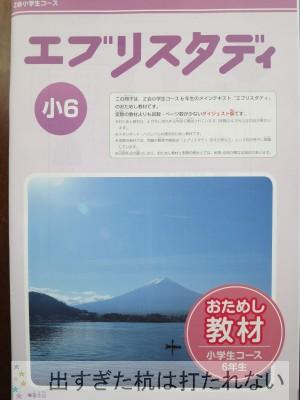 IMG_9045